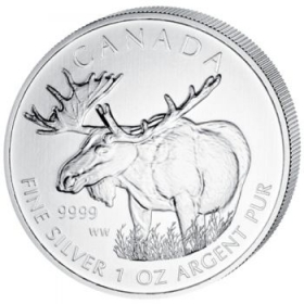 Canadian Wildlife Elch - 31,10 g - 1 oz Silber