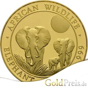 African Wildlife Elephant 2014 Avers